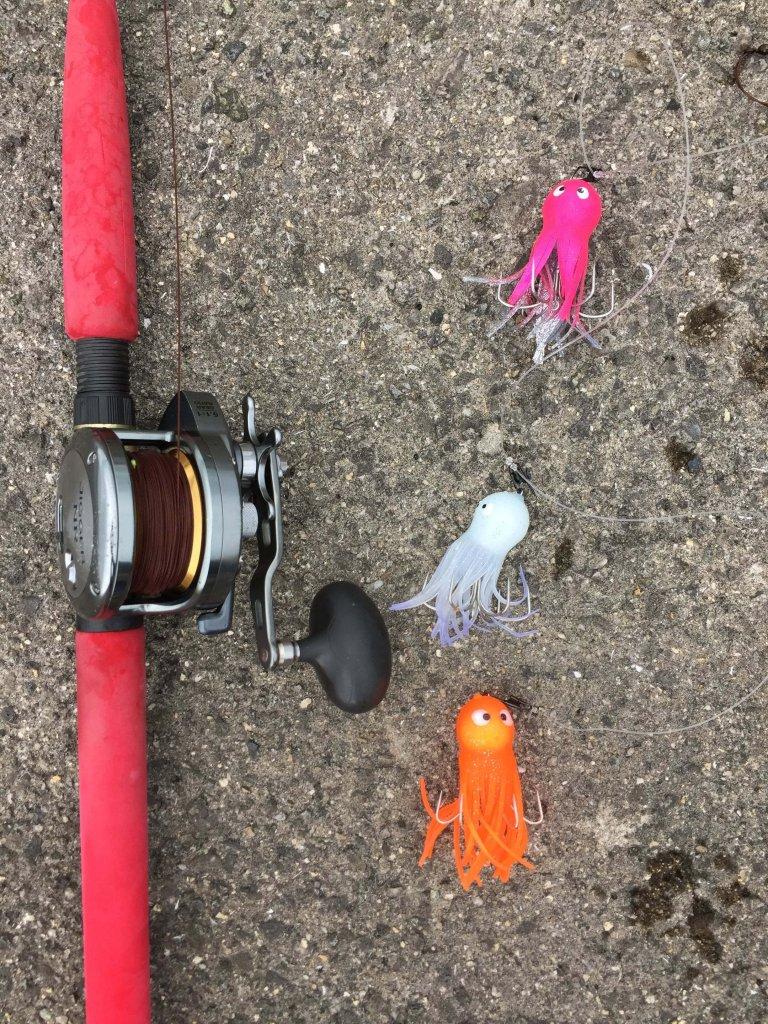 時間 タコ 釣り タコエギの仕掛けと釣り方【堤防】