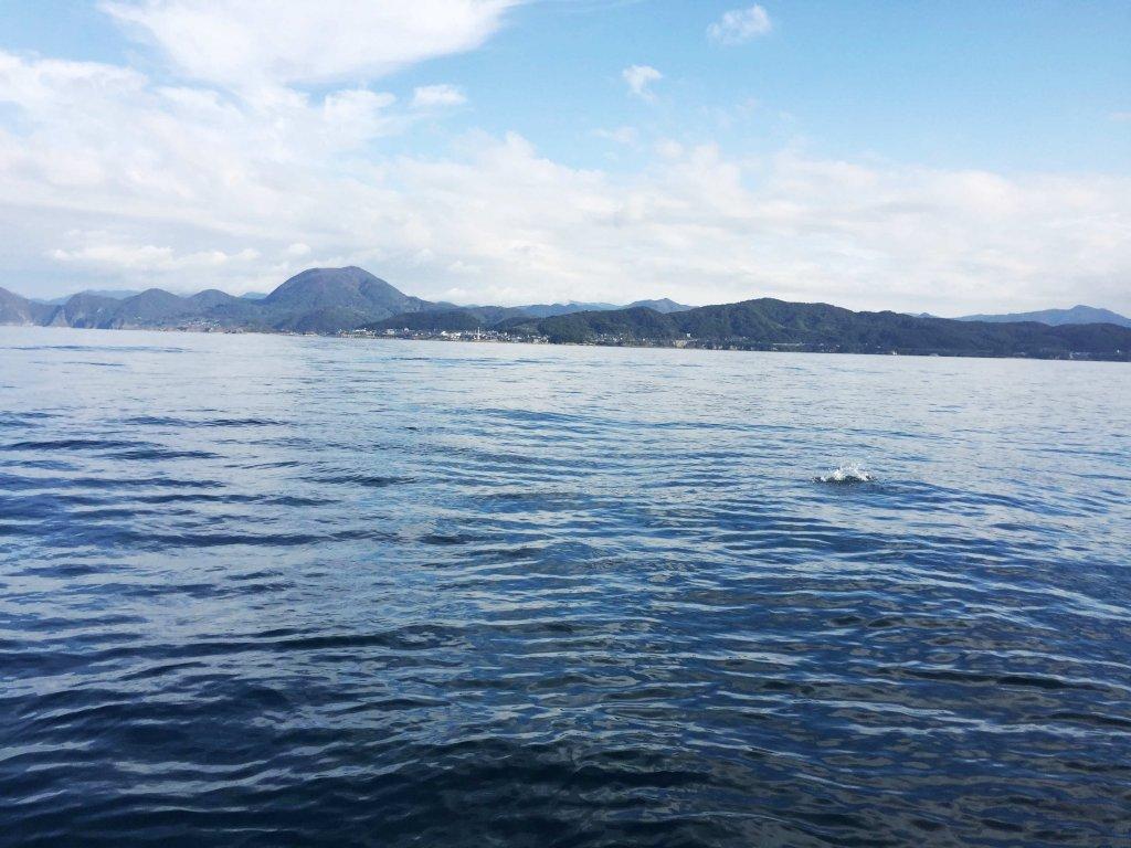 ジギング,ヴィーナス,日本海,京丹後,久美浜