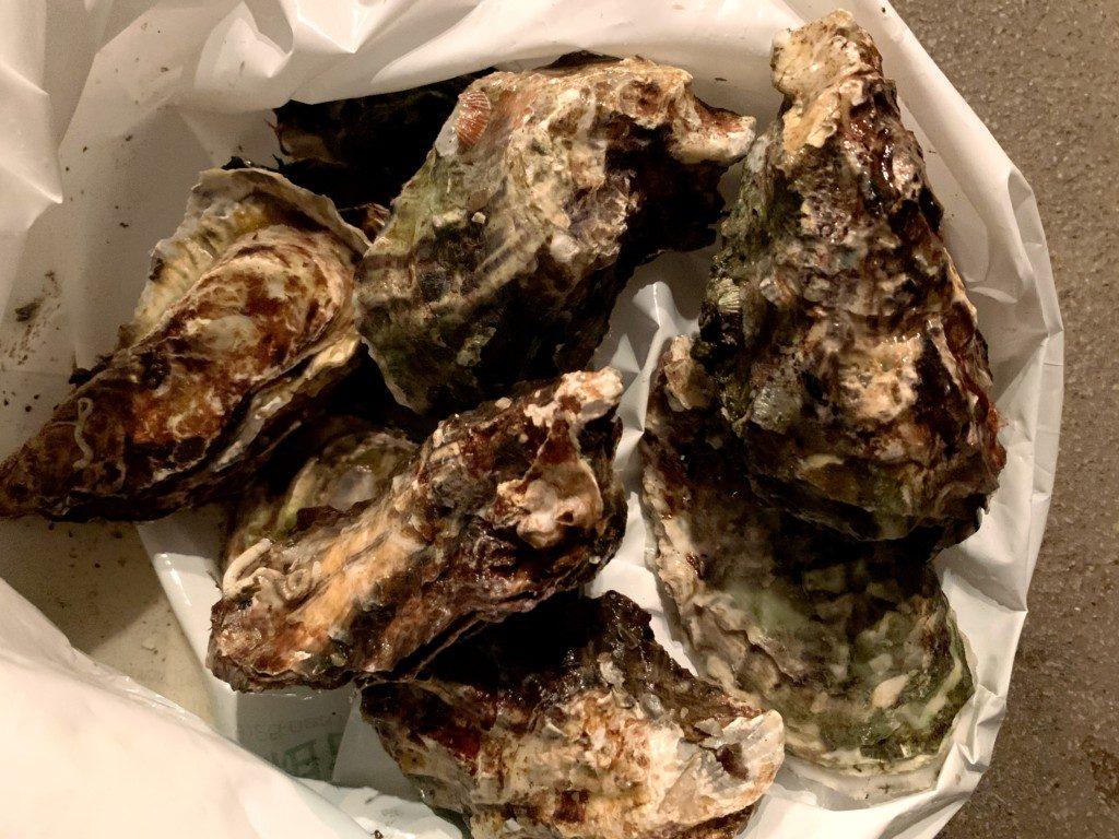 生牡蠣,物々交換,太刀魚