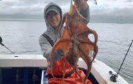 絶好調でした!!明石の船タコ・タコエギの釣り@海練丸