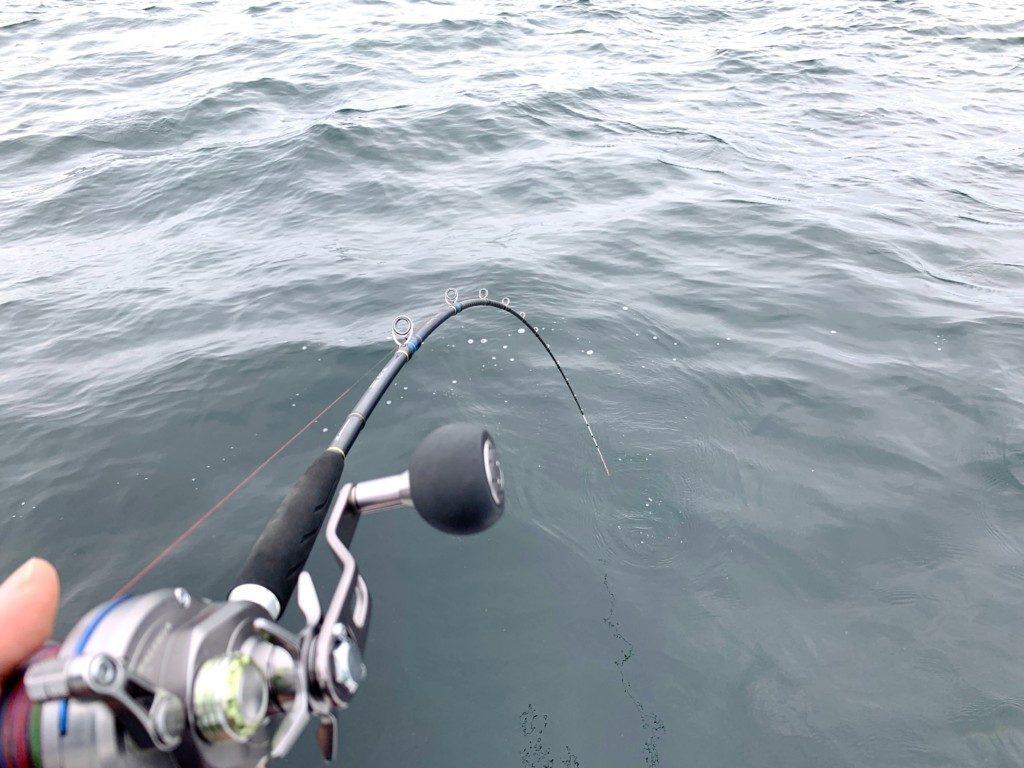 鯛サビキ,チョクリ,落とし込み,ハマチ,赤穂沖
