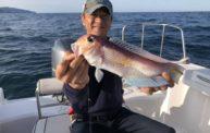 甘鯛が釣れたよ!宮津でレンタルボートフィッシングしてきました。