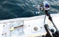 小潮は最高!数釣りが楽しいタチウオテンヤ@湊丸bay