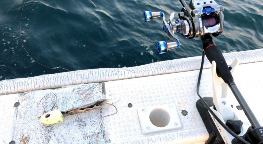 タチウオテンヤ,小潮,太刀魚,湊丸