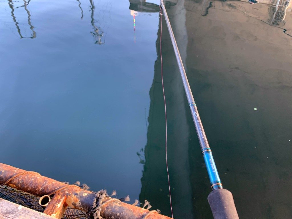 海上釣堀,田尻,タックル,仕掛け,釣り方,エサ