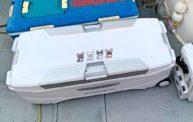 シマノ スペーザ ホエール リミテッド 650をオフショアジギング用に購入したよ!!