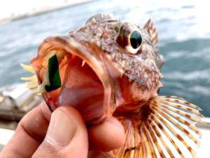 https://j-fishingdiary.com/wp-content/uploads/2021/04/IMG_2956-300x225.jpg