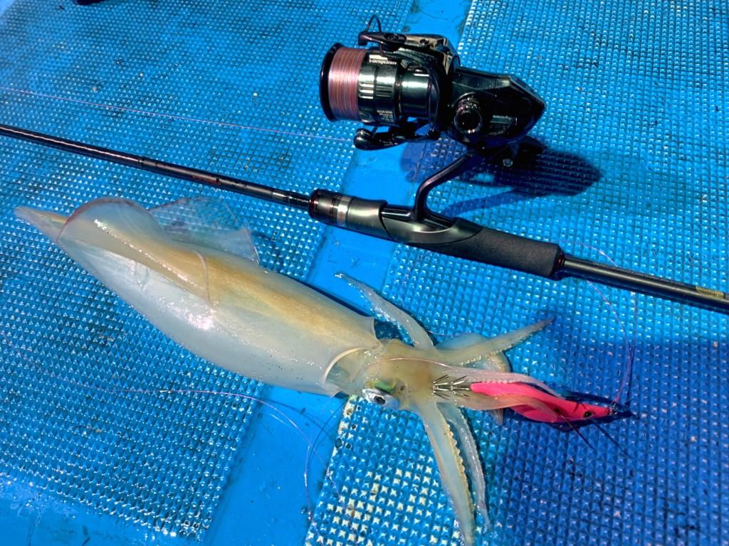 https://j-fishingdiary.com/wp-content/uploads/2021/07/IMG_4588-150x150.jpg