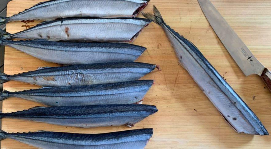 タチウオテンヤ,サンマ餌,作り方
